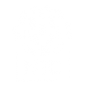NTC logo bele boje